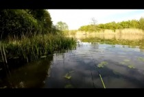 Рыбак с удочкой на берегу пруда