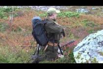 Норвежский охотник на рябчиков