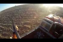 Охотник из грузовика стреляет по волкам