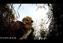 Охотник в засидке