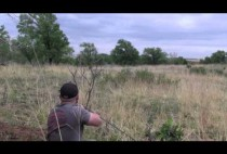Охотник целится в волка