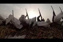 Охотники целятся в гуся