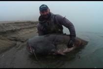 Рыбак позирует с сомом