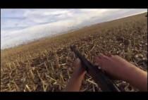 Охотники скрадывают гусей