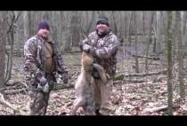 Охотники с добытым трофеем