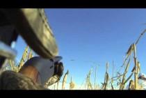 Охотник стреляет по гусю из ружья