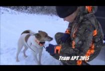 Финский охотник с собакой
