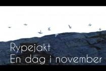 Норвежские куропатки