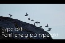 Летящие куропатки