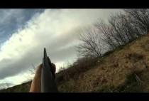 Охотник целиться в гуся