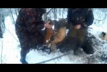 Охотники возле норы