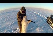 Охотник с волком в руках