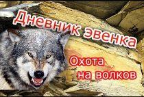 Якутский волк