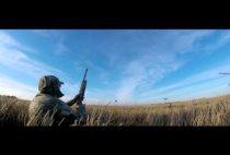 Охотник на поле