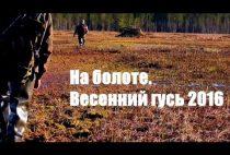 Охотники на болоте