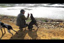 Охотник с собакой на берегу реки