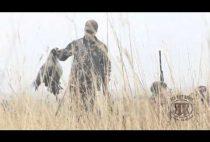 Охотник несет гуся