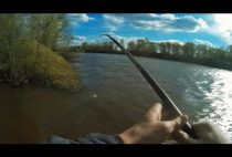 Рыбак вываживает карася