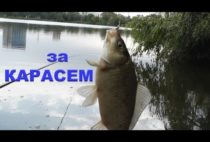 Рыбак с пойманный карасем