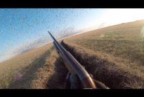 Канадский охотник на поле
