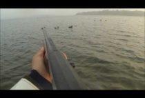 Датский охотник целится в уток с катера