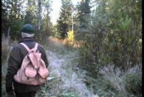 Финский охотник идет по лесу