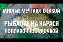 Карасик в руках рыбака