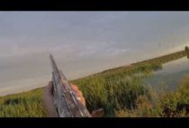 Охотник целится в утку