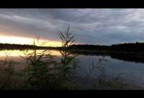 Водоем в Московской области
