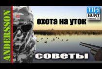 Заставка видео про охоту на уток