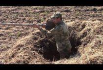 Охотник в скрадке