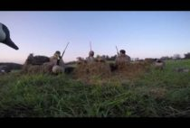 Охотники в засидке