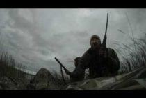 Охотники стреди камышей