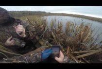 Охотники на берегу водоема