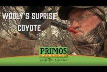 Охотник манит койота