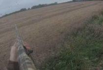 Охотник целится в гуся