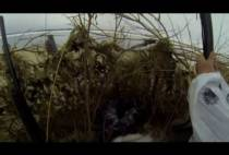 Охотники в засидке на гуся