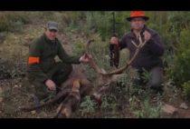 Охотники на оленя