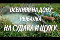Осенняя рыбалка на видео