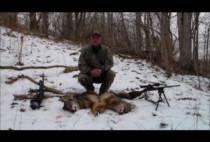 Американский охотник на волков