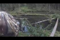 Охотник на берегу реки