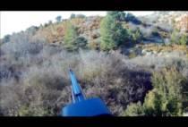 Охотник целится в пробегающего кабана