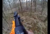Охотник стьреляет по кабану